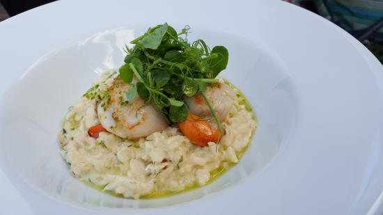 St Mawes, UK: Local Scallops On Crab Risotto