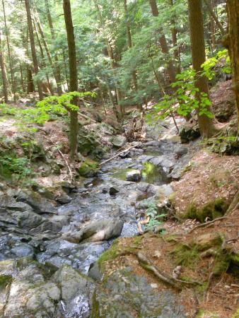 Silver Bay, Νέα Υόρκη: Hiking
