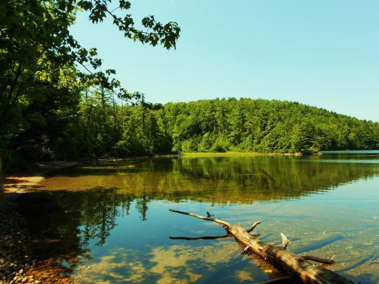 Silver Bay, Νέα Υόρκη: Jabez Pond