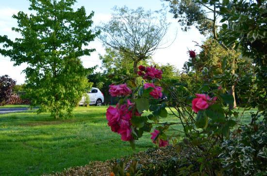 Mandeville-en-Bessin, Frankreich: tuin,...ontspanning