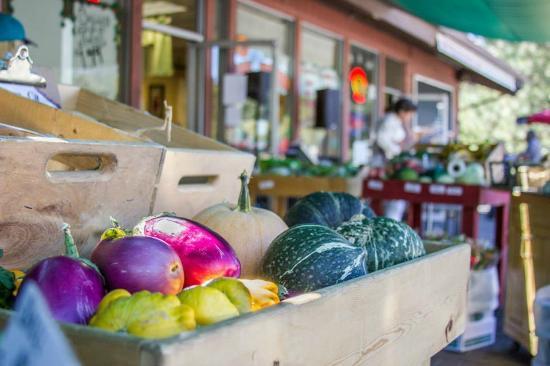 Idyllwild, Californië: Farmers Market at Sky Island Natural Foods