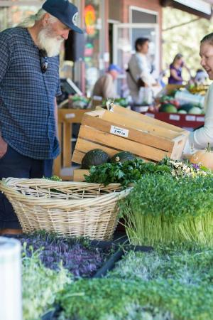Idyllwild, Californië: Saturday Farmers Market at Sky Island Natural Foods