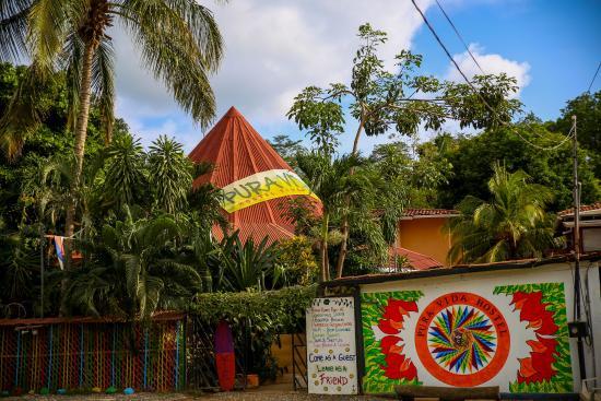 Pura Vida Hostel: Hostel outside