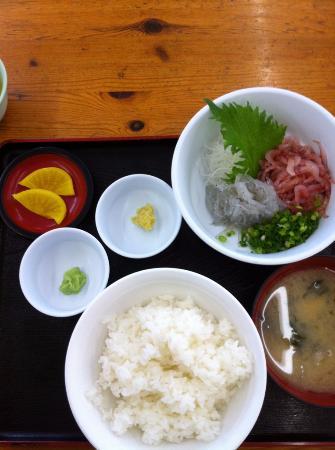 Kogawakouogashishokudo : 生しらす定食