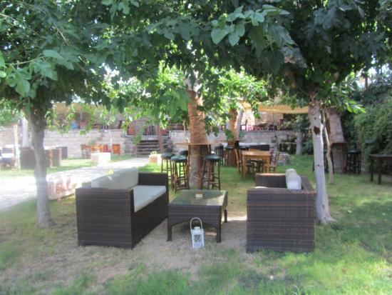 Hamam Coffee Bar: The garden.