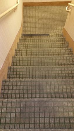 Holiday Inn Express & Suites Ontario Airport: Stairway