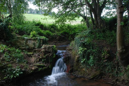 Hoarwithy, UK: The pretty babbling brook