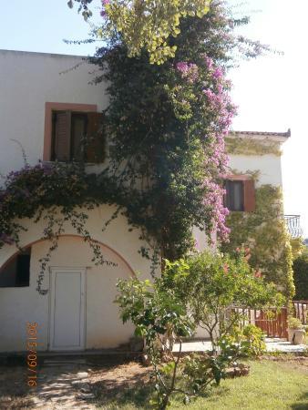 Castello Rosso Hotel: Blumen