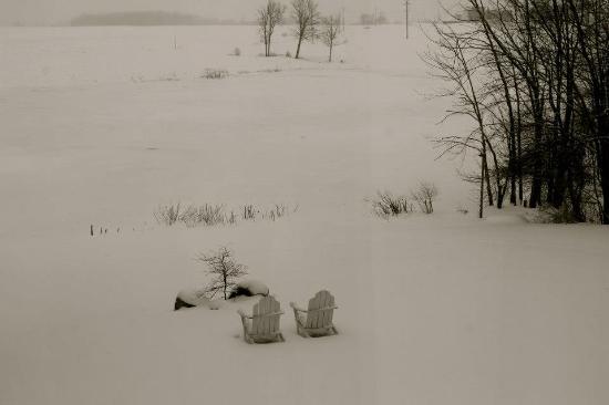 Allegan, MI: view of frozen lake