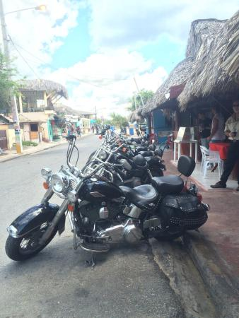 Dominican Riders - Day Tours : Best  excursion I've done in any Caribbean country hands-down.