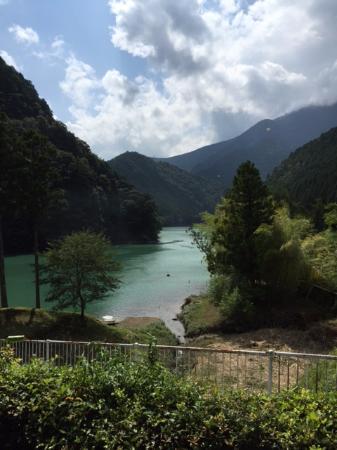 Hotel Seiryuso: ホテルの裏山より