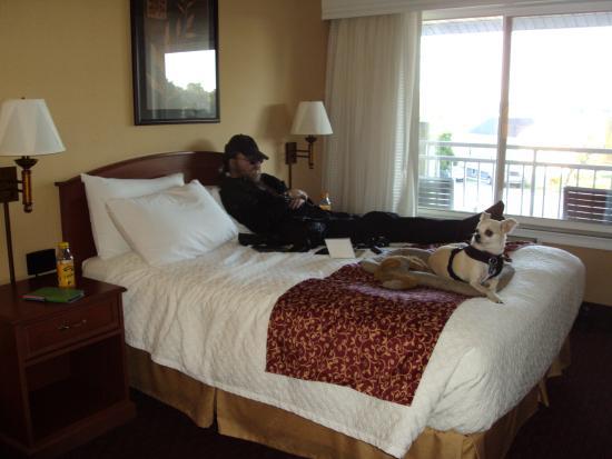 سانت إجناس بدجيت هوست إن: Husband and chuk taking a nap on bed.