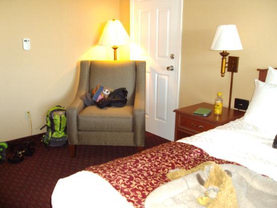 سانت إجناس بدجيت هوست إن: Comfy chair