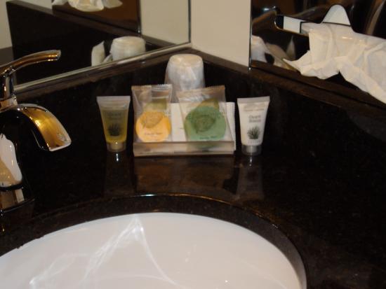 سانت إجناس بدجيت هوست إن: accomidations in bathroom.