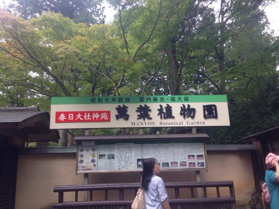 photo0.jpg - Picture of Manyo Botanical Garden, Nara - TripAdvisor