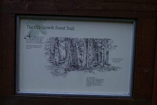 Hood River, OR: Trail Description