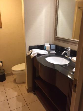 Hampton Inn Alexandria/Pentagon South: Standard totally clean Hampton Inn