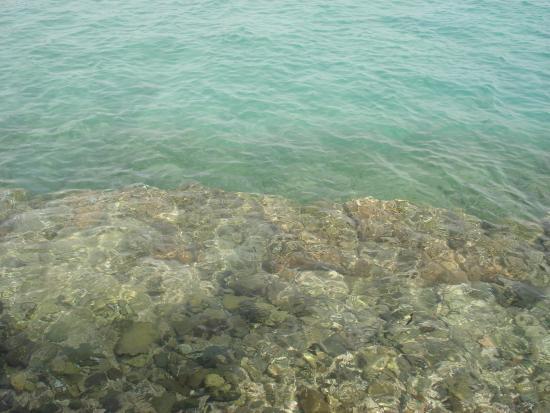 Sea Garden Hotel : 20
