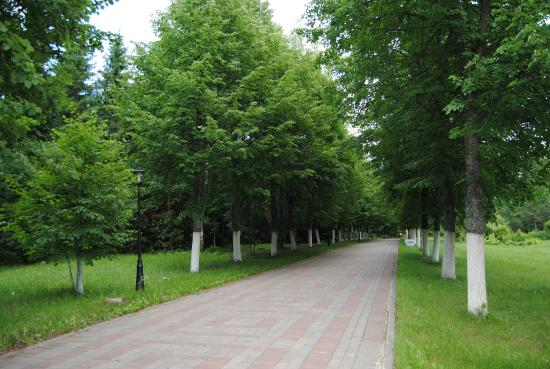 Domodedovo Urban Okrug, Russia: территория