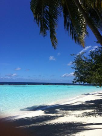 Swimming @kurumba_maldives
