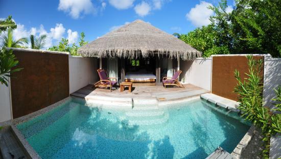 Coco Bodu Hithi Beach Villa Private Pool