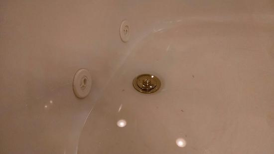 As the room of the hotel was quite clean, the shower floor and ...