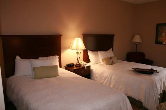 Hampton Inn Danville: One Double