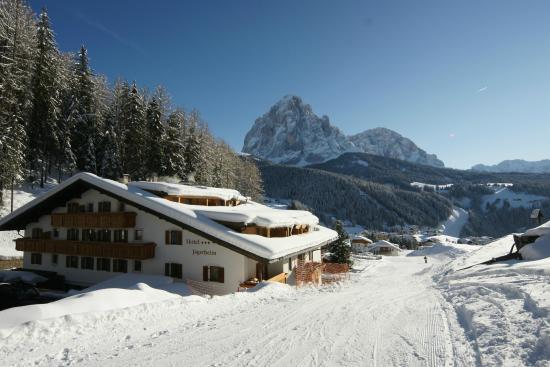 Hotel Jägerheim : Winter