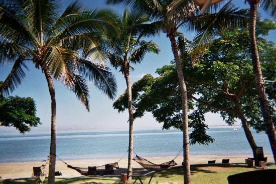 sofitel fiji resort  u0026 spa  beachside hammocks beachside hammocks   picture of sofitel fiji resort  u0026 spa denarau      rh   tripadvisor   au