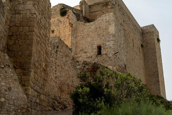 Mora d'Ebre, Spain: El castillo de Miravet al paso del rió ebro