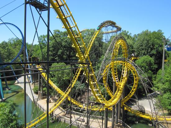 Busch Gardens Williamsburg Lost And Found Phone Number Garden Ftempo