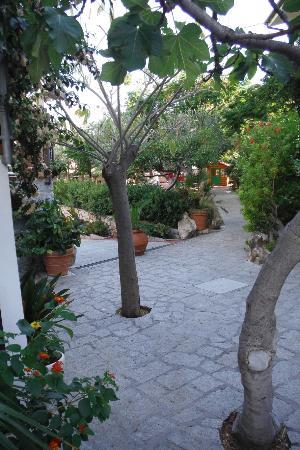 Fetovaia, Italia: Vialetto interno