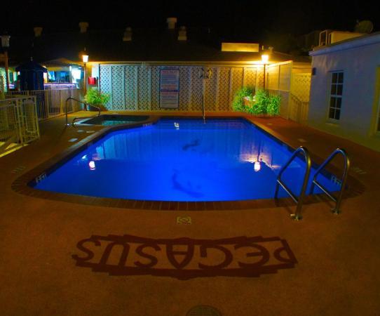 Pegasus International Hotel: Pool