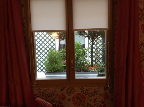 Hotel Saint Paul Rive Gauche: a view to the garden