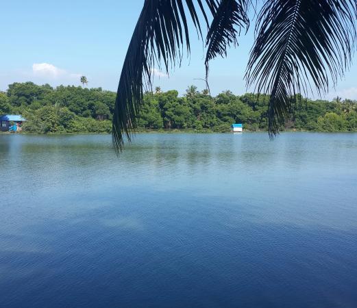 Country Club Rock Springs : Vembanad Lake