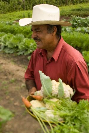 Ka'ana Resort: Organic Garden