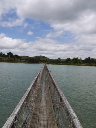Whananaki Holiday Park: An invitation to cross
