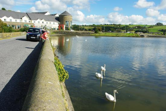 Rosscarbery, Irlanda: View of hotel from a popular fishing spot