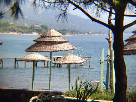 Calidus Hotel: Simple pleasures....