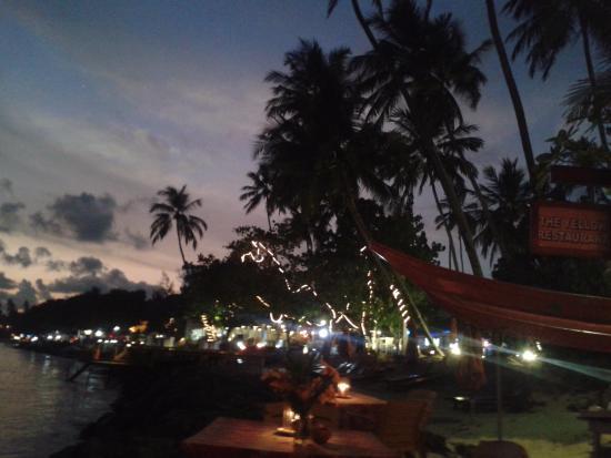 Sunny Mood Guesthouse: Вид на побережье из ресторана в 130м от отеля вечером