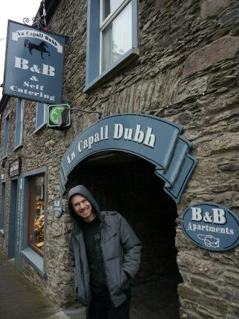 An Capall Dubh B & B & Apartments