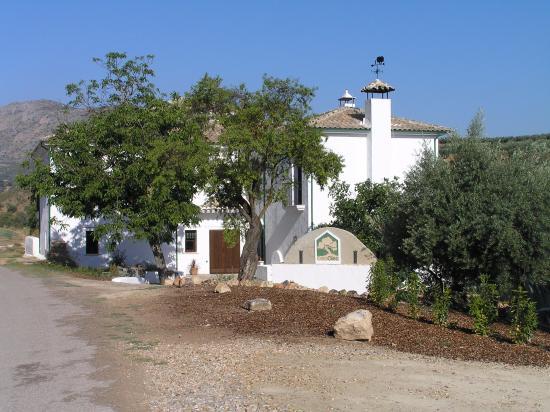 Castiglion Fiorentino, Itália: Casa Olea Spain