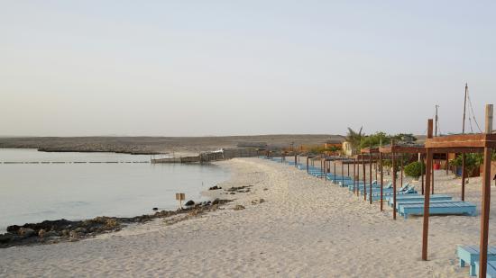 Private Beach Of Ras Al Hadd Beach Resort Picture Of The Turtle