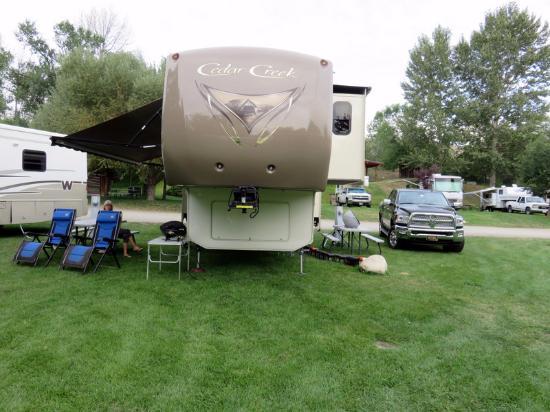 Pine Near RV Park & Campground: Our Campsite
