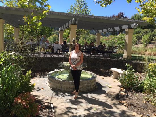 Forestville, Califórnia: The courtyard for boxed lunch or wine and cheese pairing