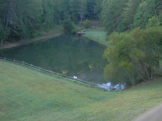 View of the pool from the cabin picture of little valley for Fishing cabins in tennessee