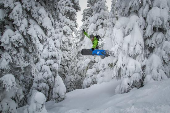 Norden, Калифорния: A snowboarder enjoys the deepest powder in Tahoe, with no crowds