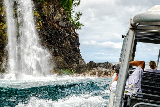 Lava Ocean Tours Inc : #Hamakua #waterfall