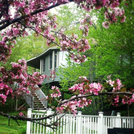 Spring At The Mountain Villas
