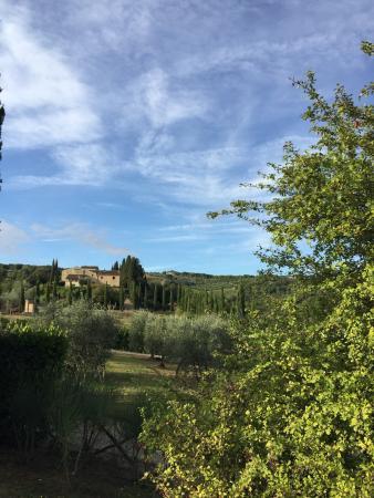 Tenuta Sant'Ilario: photo2.jpg